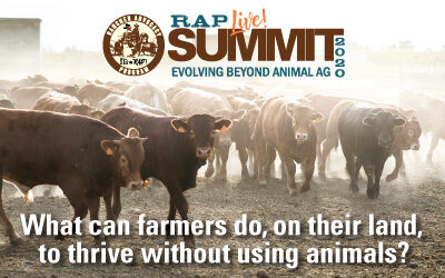 Beyond Animal Agriculture Summit is a Hit! | JaneUnChained News