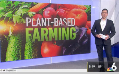 Is Vegan Farming Possible?