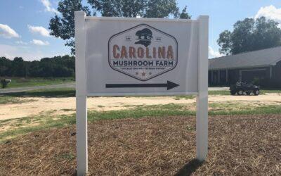 Carolina Mushroom Farms